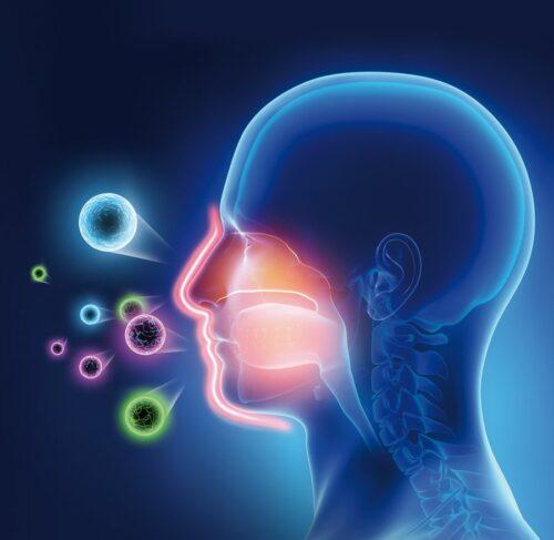 Kosttillskott Nutrinovate Medistus® Antivirus skyddsbarriär för munnen och halsens slemhinnor